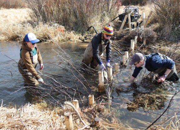 Climate Fund Grantee - Wild Utah Project + Swaner Eco Preserve