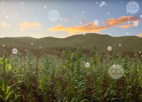 Climate Fund Grantee - Summit Land Conservancy